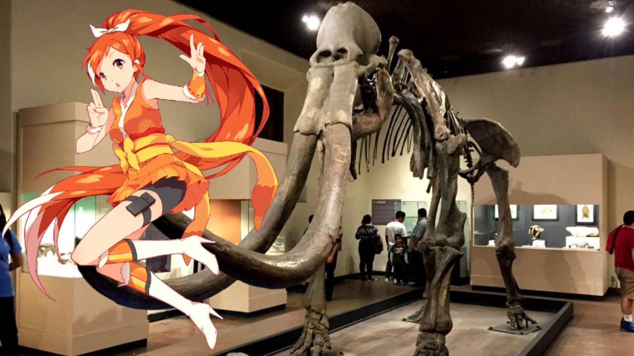 Crunchyroll Museo Paleontología Guadalajara