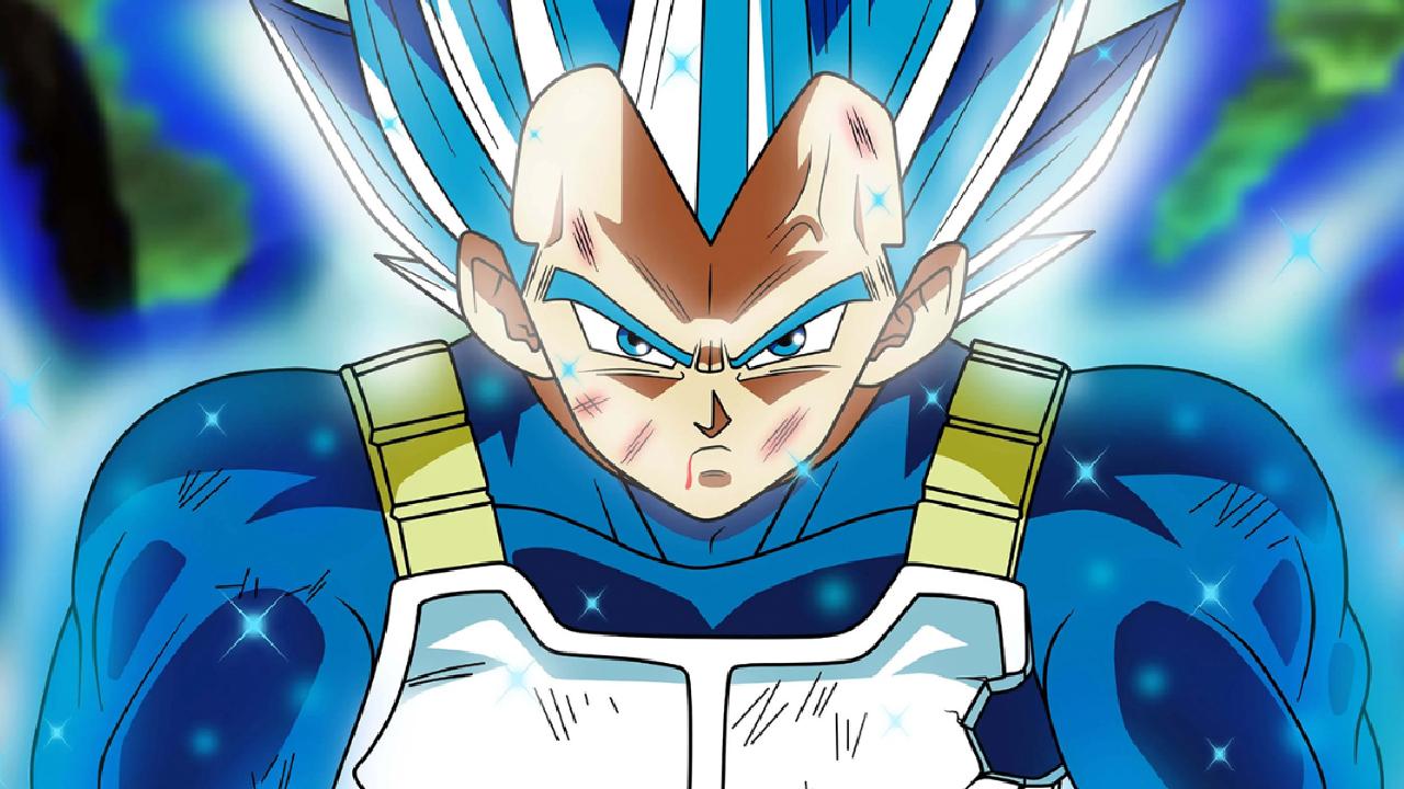 SSB Evolution Vegeta Dragon Ball anime