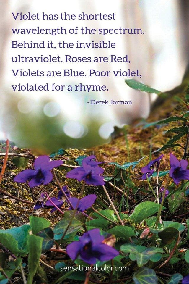 Quotes About Purple  Sensational Color