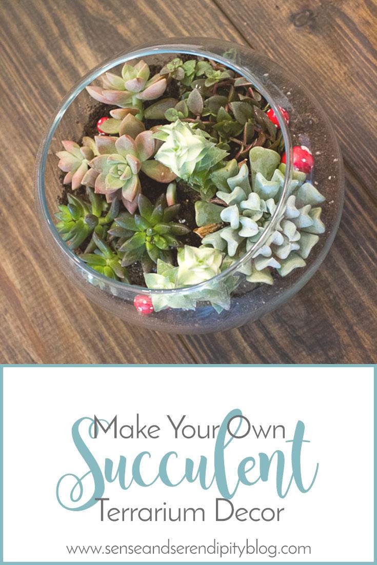 Make Your Own Succulent Terrarium Decor | Sense & Serendipity