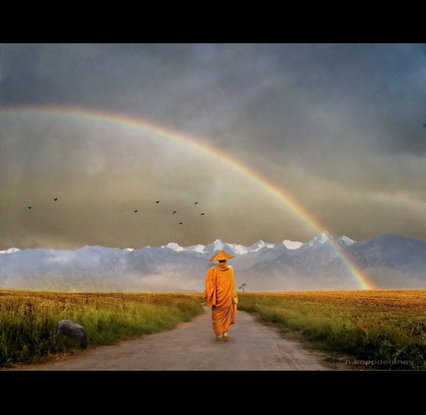 """""""Rainbow Warrior"""" von h.koppdelaney"""