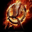 Catching Fire Motion Poster