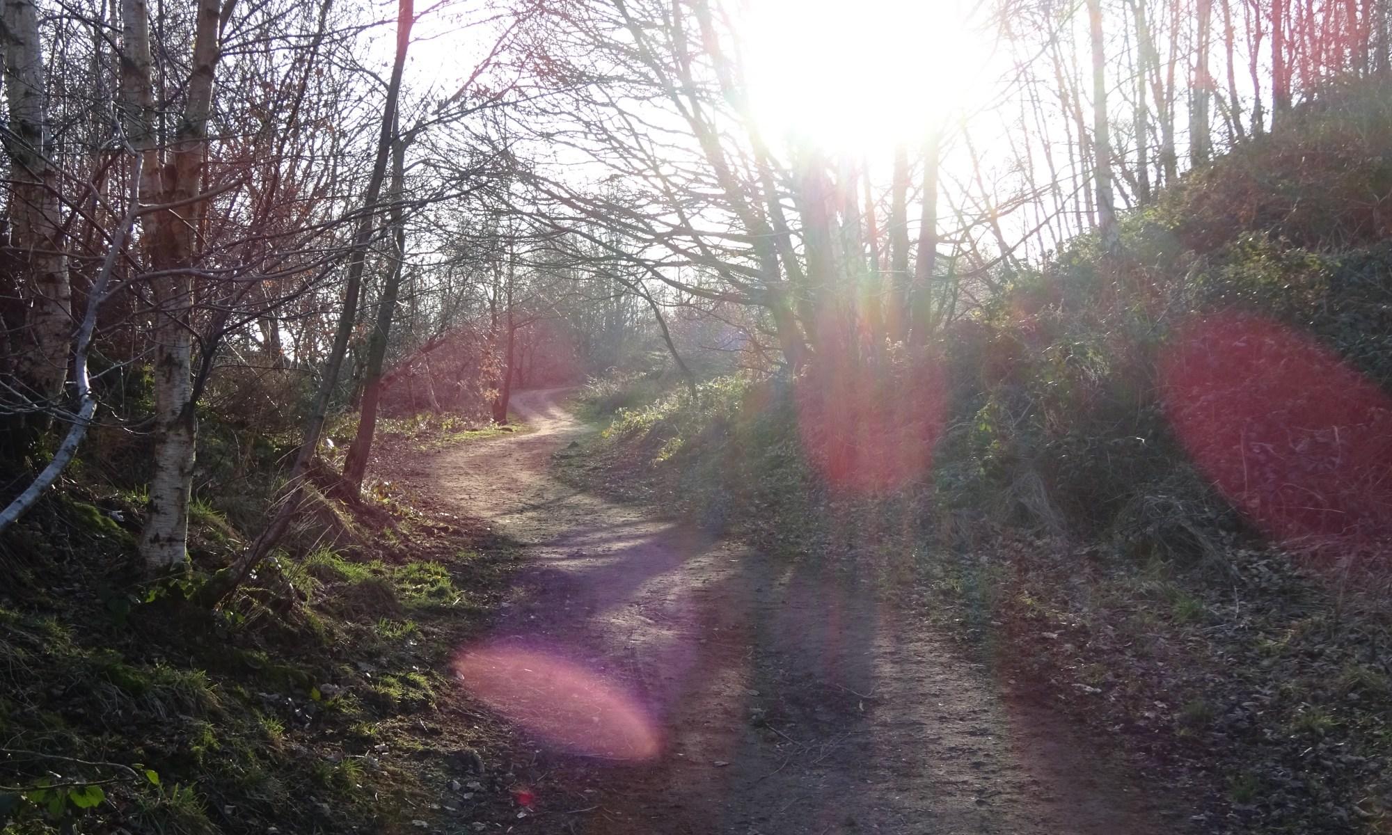 Wadsley Well-being Walk