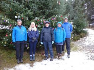 Dec Langsett Christmas tree