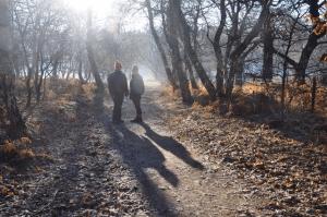 Dec 2016 Sherwood Forest