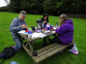 Tea and picnic
