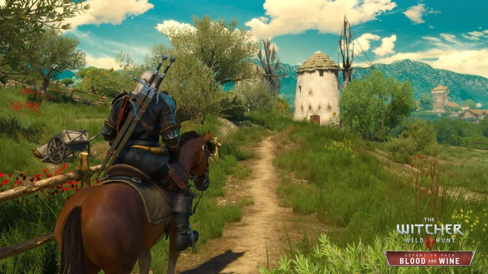 Witcher 3 max