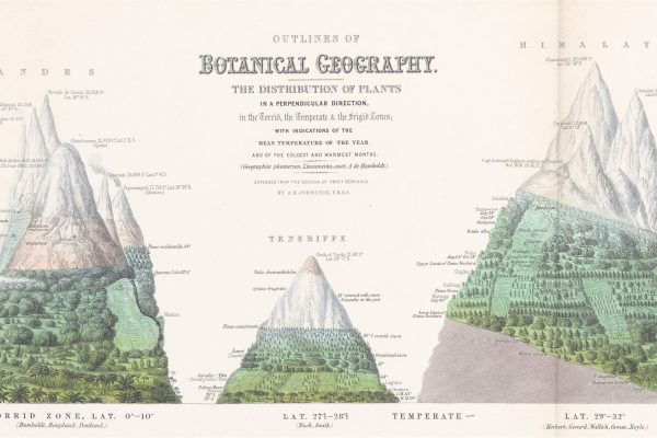 Botanical Geography The Distribution of Plants in Himalaya, Andes, Teneriffe, Alps and Pyrenees,