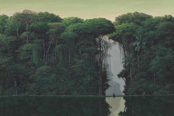 The Tropical Landscapes of Tomás Sánchez