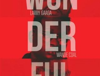 Larry Gaaga Wonderful Ft. Wande Coal x Sarkodie