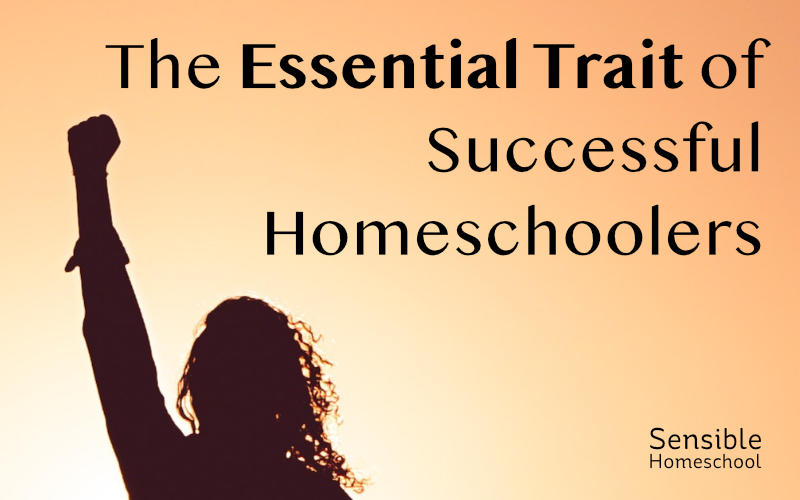 Essential trait of successful homeschoolers silouette on orange background