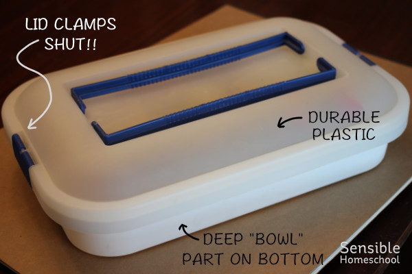 Mini Sandbox cake carrier with labeled features