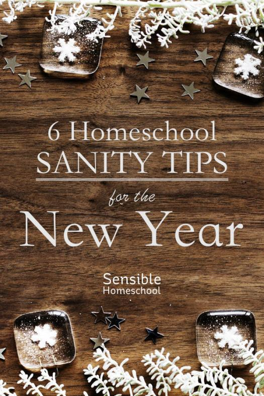 Homeschool Sanity Tips for the New Year by Sensible Homeschool on wood background with snowflake decor