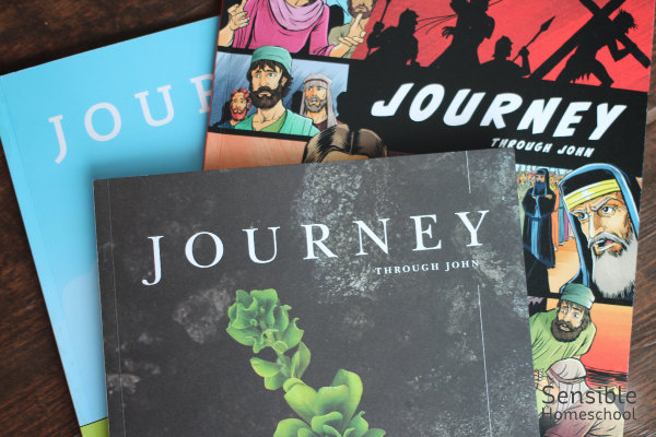 3 Journey Through John Bible study workbooks for adults and kids