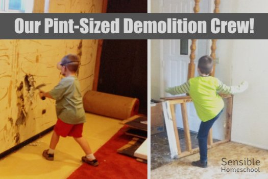 Our Pint-Sized Demolition Crew! 2 boys helping demolish walls in home renovation