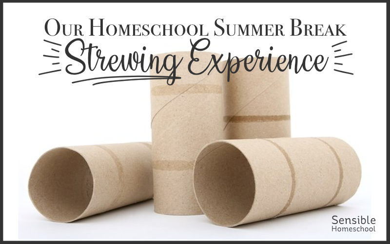 Our Homeschool Summer Break Strewing Experience title with cardboard tubes