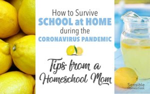 How to Survive School at Home - Tips from a Homeschool Mom