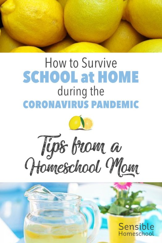 How to Survive School at Home during the Coronavirus Pandemic - Tips from a Homeschool Mom