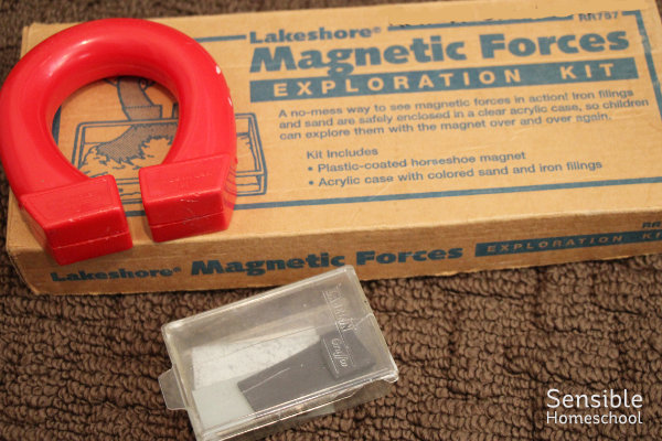 Homeschool science magnets and prisms