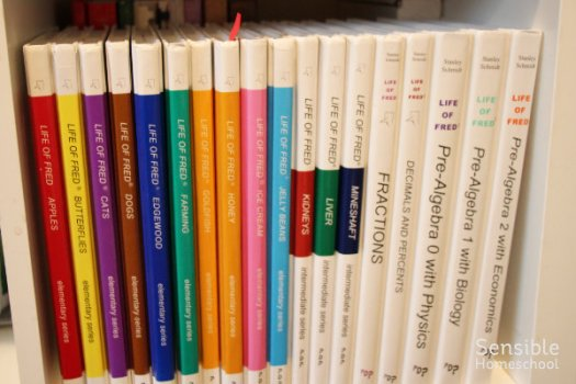 Life of Fred math book series