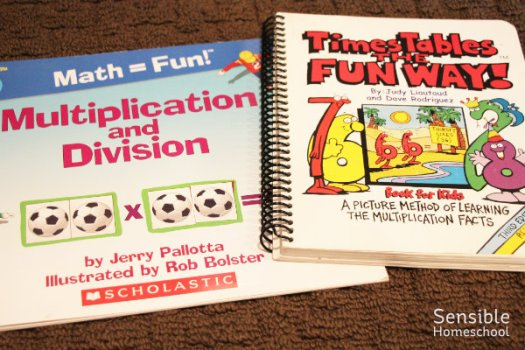 Multiplication and Division book, Times Tables the Fun Way book