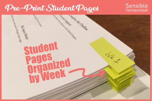 Binder of pre-printed Story of the World student activity pages