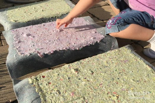 Preschooler touching homemade paper while it dries