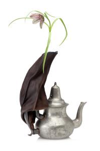 Pepe Heykoop_Symbiotic Snail vase teapot