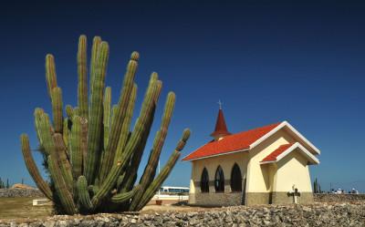 Isola di Aruba (26)