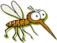 zanzara-tigre_medium