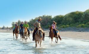 cane e cavallo villaggio_barricata_spiaggia_1