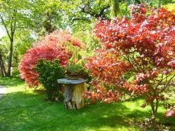 botanicka-zahrada-hl-m-prahy-79c