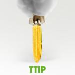 ttip-corn5_bigger