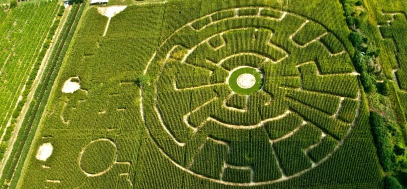 Labirinto Alfonsine