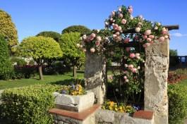 Jardin du Monastère de Cimiez, Nice