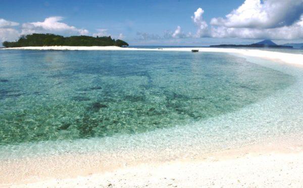 Molucche - isola -spezie
