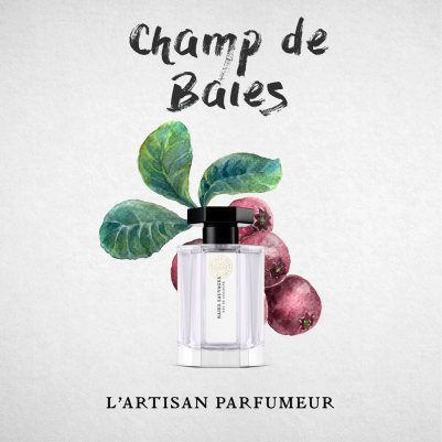 Champ-de-baies