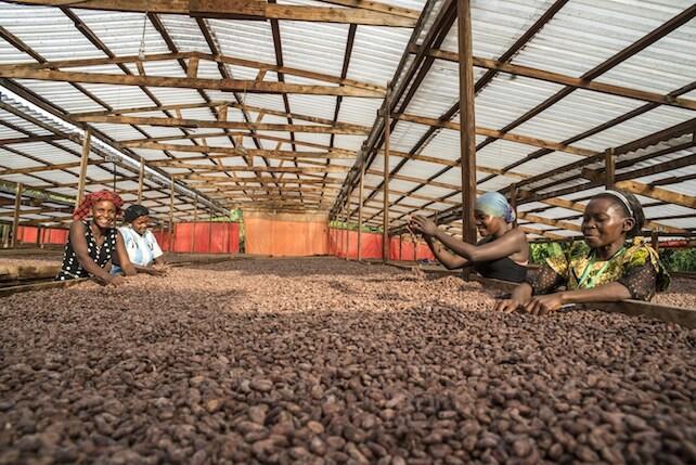 Vanini-nuova linea-biologico-Uganda