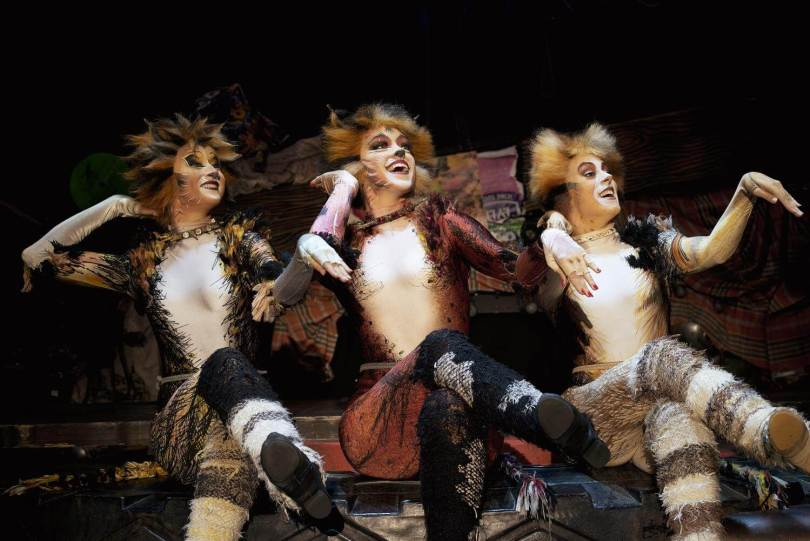 gatto-cats-musical