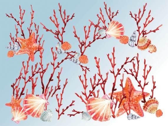 coralli-1