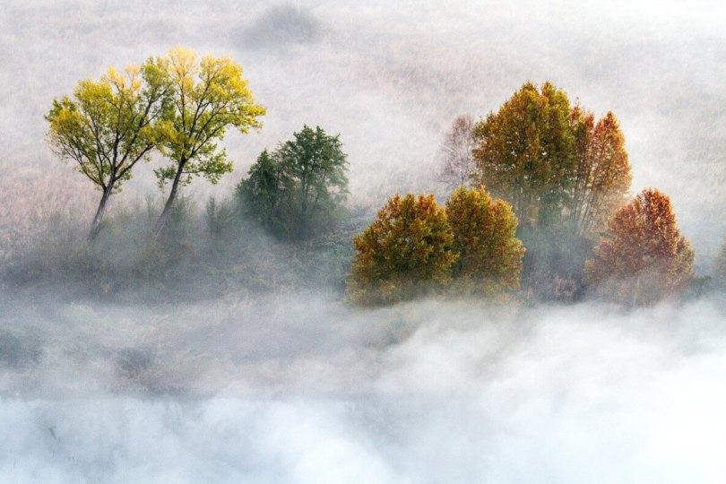 Natura in un clic: gli incanti di Davide Biagi