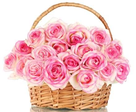 Roses_Wicker_basket_Pink_488086