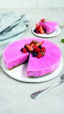 Desserts_Frozen berrryYoghurtCake_9x16