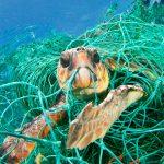 primaloft-e-parley-for-the-ocean-per-riciclare-la-plastica-inquinante