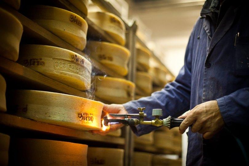 bitto-2020-formaggio-in-una-mostra-limited-edition