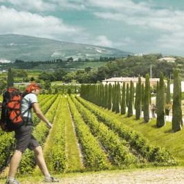 bardolino-a-piedi-o-in-bici-un-cammino-tra-vino-e-natura