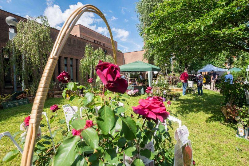 floreka-2021-a-ranica-la-mostra-mercato-del-giardinaggio-creativo