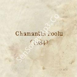 Chamanthi Poolu (1984) mp3 songs download