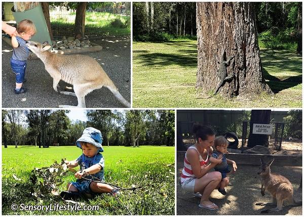 Australia trip 11 months