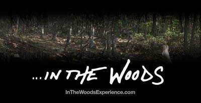 In the Woods Experience di Jennifer Elster, una  passeggiata verso l'ignoto